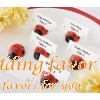 Ladybug Place Card Holder Favours for Wedding